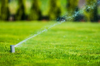 New Home Lawn Maintenance Tips