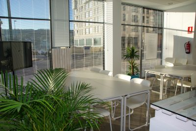3 Sustainability Solutions for An Eco-Friendly Office
